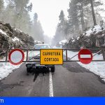 El Cabildo abrirá mañana martes las carreteras de acceso al Teide