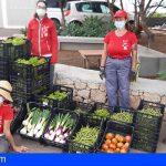Granadilla | El PFAE-GJ «Emplea Agrícola» saca su primera cosecha solidaria