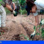 Ecocomedores reactiva su programa de alimentación ecológica para 50 centros escolares y 11.000 comensales