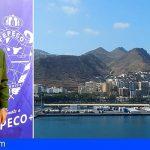 FEPECO pide al Cabildo de Tenerife que apoye a las empresas locales de la construcción con hechos