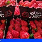 La fresa canaria llena las fruterías de Alcampo