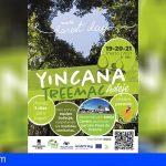 Adeje organiza una yincana medioambiental para conmemorar el Día Internacional de los Bosques