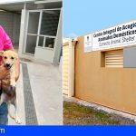 CC Adeje apuesta por mejorar la gestión del Centro Integral de Acogida de Animales Domésticos