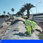 Granadilla | Se inician las mejoras en el paisaje de la Tf-1 en el enlace del aeropuerto Tenerife-Sur