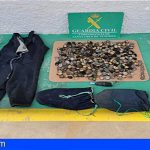 Tenerife | Diez kilos de lapas incautadas y un denunciado por marisqueo y venta ilegal