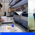Tesis de la ULPGC estima el posible impacto de una alta concentración de medusas sobre el zooplancton y larvas de peces