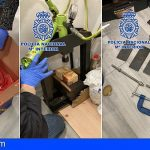 Desarticulan en Madrid una red dedicada a introducir cocaína a través de envíos postales, desde Ecuador