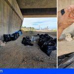 Ecoimplicados recogió en el Polígono de Granadilla 265 kilos de basura