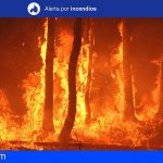 Se mantiene la Alerta por Riesgo de Incendios Forestales en Tenerife y Gran Canaria