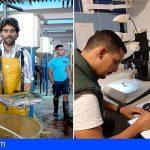 La ULPGC da un paso adelante en la producción de medregales de acuicultura